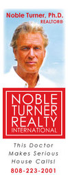 Nobleturnerrealty_logo01